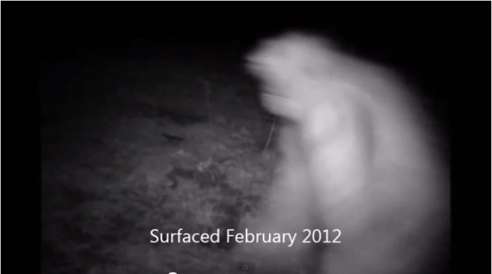 alleged bigfoot trail cam photo February 2012